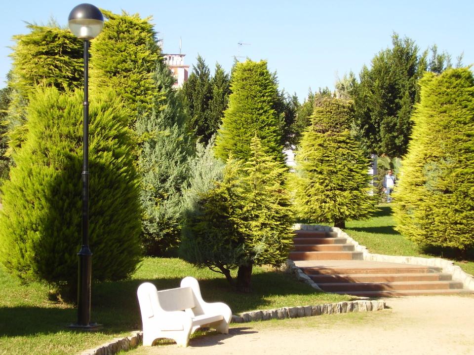 parque Alquenencia | Alzira (Valencia)